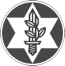לוגו ארגון נכי צהל